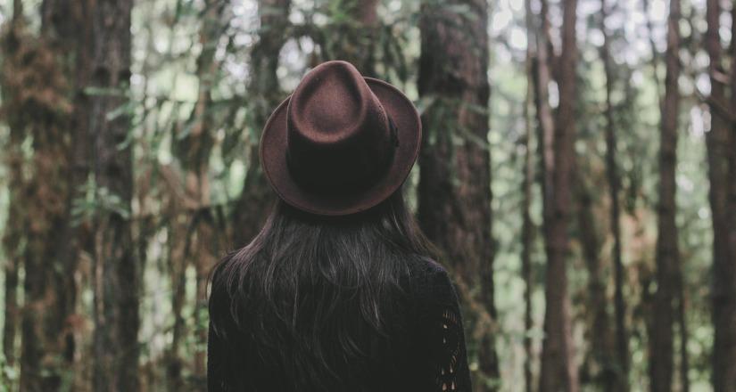 narcissistic feed, narcissism, healing, narcissist, narcissistic abuse, littleredsurvivor.com