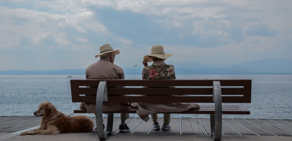 Grandparents, narcissism, no contact, littleredsurvivor.com