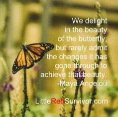 Butterfly-Maya