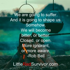 Suffer-Rob-Bell